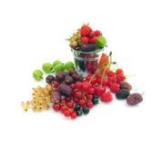 Many different berries Stock Image