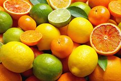 Many different citrus fruits as background. Closeup royalty free stock photos