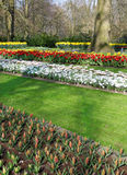 Many different colorful flowerbeds in the park Royalty Free Stock Images