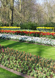Many different colorful flowerbeds in the park Stock Photos