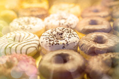 Many different donuts Stock Image