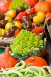 Many different ecological vegetables on market Stock Images