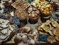 Many different edible mushrooms in baskets on food market. Gourmet food. Autumn Mushrooms stock image