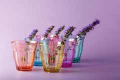 Many different glasses symbolizing determination Royalty Free Stock Photography