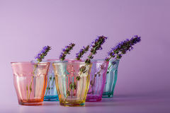Many different glasses symbolizing determination Stock Photos