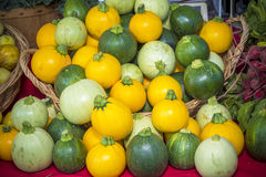 Many different kind sof small round squash Stock Image