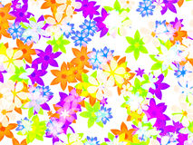 Many different multicolored open flowers background Stock Photography
