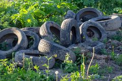 Many different old black dirty used car tires as an illegal abandoned trash dump in remote green area stock photo
