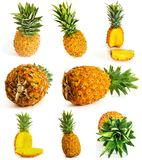 Many different pineapple on white background. whole and cut. Royalty Free Stock Photography