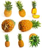 Many different pineapple on white background. whole and cut. stock photography