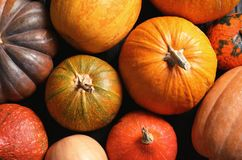Many different pumpkins as background, closeup. Autumn holidays stock photo