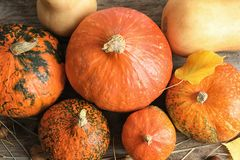 Many different pumpkins on wooden table, top view. Autumn holidays royalty free stock photos