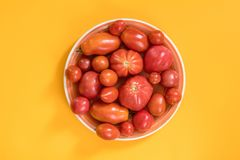 Many different red  tomatoes on yellow surface. Beautiful food a Stock Photos