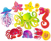 Free Many Different Sea Animals. Vector Royalty Free Stock Photos - 11981668