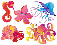 Many different sea mammals vector illustration