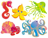 Many different sea mammals royalty free illustration