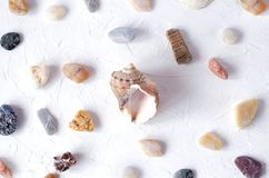Many different sea stones and seashell on a white background royalty free stock image