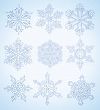 Many different snowflakes  Royalty Free Stock Photo