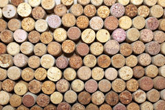 Many different wine corks Royalty Free Stock Images