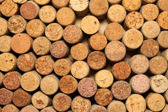 Many different wine corks Stock Images