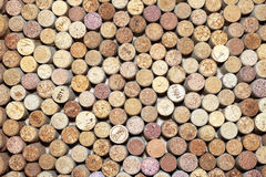 Many different wine corks Stock Image