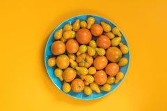 Many different yellow  tomatoes on yellow surface. Stock Photography