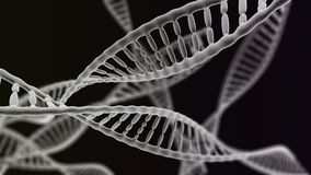 Many DNA chains on the black background. CGI visualization of the many DNA helix (electronic microscope simulation) with focus effect (dark version Stock Photos