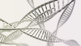Many DNA chains on the light background Royalty Free Stock Photography