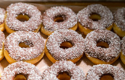 Many of donuts in a box Royalty Free Stock Images