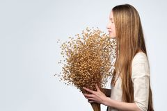 Many dried flowers of flax in the hands of a beautiful girl with lon hair. Dried flowers of flax in the hands of a beautiful girl with lon hair royalty free stock photo