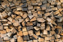 Many dry chopped firewood logs. Stock Images