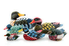 Many ducks Royalty Free Stock Images