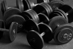 Many dumbbells. Dumbbells on the floor at fitness club Royalty Free Stock Images