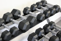 Many dumbbells are at stand at the gym Royalty Free Stock Image