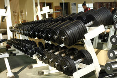 Many dumbells in gym Stock Photography