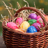 Many Easter eggs in a brown basket Stock Image