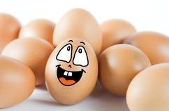 Many eggs Stock Photography