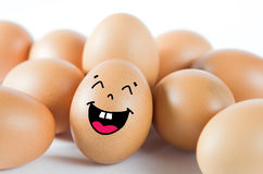 Many eggs Stock Image