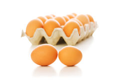 Many eggs isolated on the white Stock Image