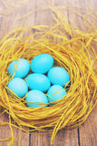 Many eggs in the nest, tinted Royalty Free Stock Photography