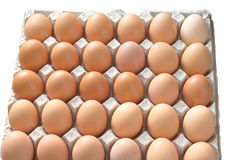 Many eggs in package isolated closeup Stock Image
