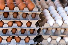 Many eggs stairs stacked Stock Photography
