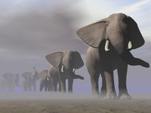 Elephants in a row - 3D render Royalty Free Stock Image