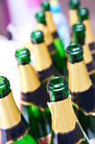 Many empty bottles of champagne Royalty Free Stock Photography