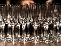 Many empty glasses in a line Stock Images