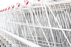Many empty shopping carts in a row. Royalty Free Stock Image