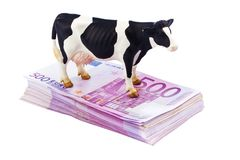 Many of Euro 500 banknotes money Royalty Free Stock Photos