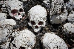 Many fake human skulls Royalty Free Stock Image