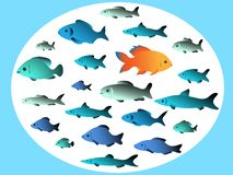 Many fish swim in opposite directions royalty free illustration