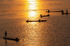 Many Fisherman paddling a Rowboats for fishing when sunset, Silh Stock Image